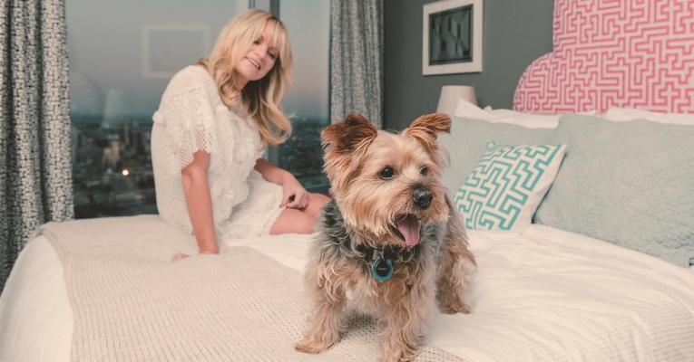 10 dicas para evitar bagunça e mau cheiro de pets em casa